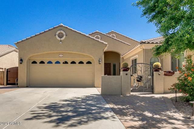 4381 E Nolan Place, Chandler, AZ 85249 (MLS #6237926) :: Yost Realty Group at RE/MAX Casa Grande
