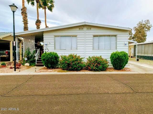 10960 N 67TH Avenue N #146, Glendale, AZ 85304 (MLS #6239091) :: Selling AZ Homes Team