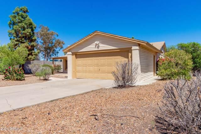 2710 E Aster Drive, Phoenix, AZ 85032 (MLS #6239353) :: Yost Realty Group at RE/MAX Casa Grande
