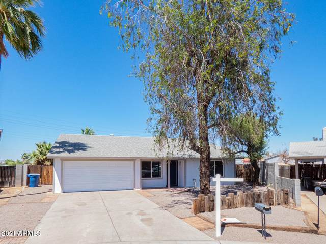 4003 S Potter Drive, Tempe, AZ 85282 (MLS #6239912) :: Yost Realty Group at RE/MAX Casa Grande
