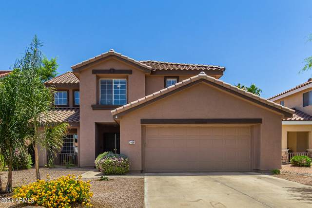 2909 E Glenhaven Drive, Phoenix, AZ 85048 (MLS #6240579) :: Yost Realty Group at RE/MAX Casa Grande