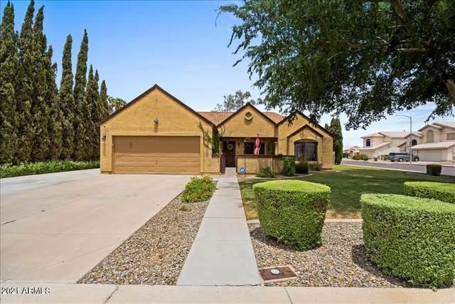6902 W Paradise Drive, Peoria, AZ 85345 (MLS #6240680) :: Yost Realty Group at RE/MAX Casa Grande
