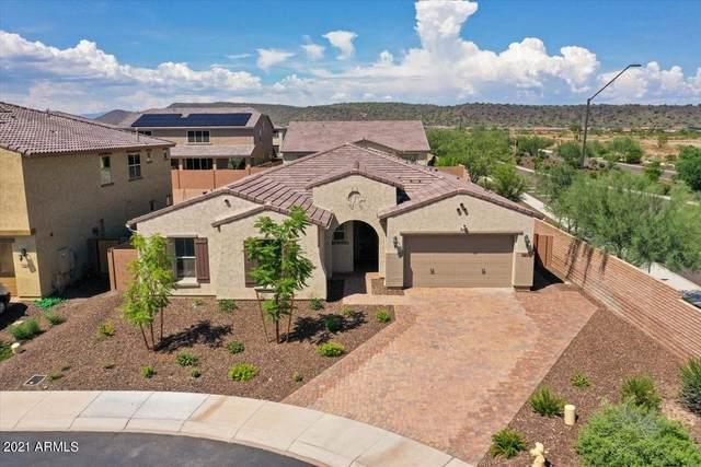 11836 W Morning Vista Drive, Peoria, AZ 85383 (MLS #6241034) :: Keller Williams Realty Phoenix