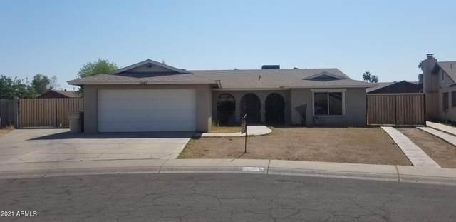 11045 N 57TH Drive, Glendale, AZ 85304 (MLS #6241563) :: Yost Realty Group at RE/MAX Casa Grande