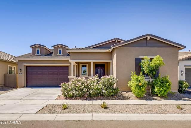 1417 E Pedro Road, Phoenix, AZ 85042 (MLS #6241692) :: Yost Realty Group at RE/MAX Casa Grande