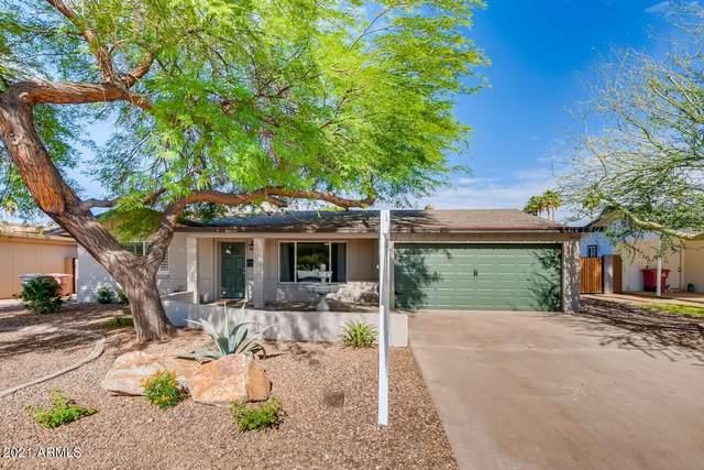 5402 N 82ND Street, Scottsdale, AZ 85250 (MLS #6242201) :: Zolin Group