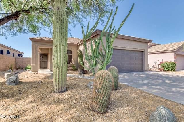 4723 E Prickly Pear Trail, Phoenix, AZ 85050 (MLS #6242985) :: Yost Realty Group at RE/MAX Casa Grande