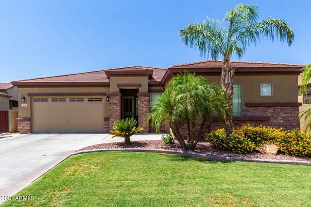 11947 W Villa Hermosa Lane, Sun City, AZ 85373 (MLS #6243042) :: Power Realty Group Model Home Center