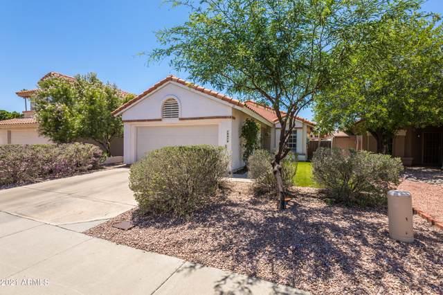 19410 N 76TH Drive, Glendale, AZ 85308 (MLS #6243099) :: Nate Martinez Team