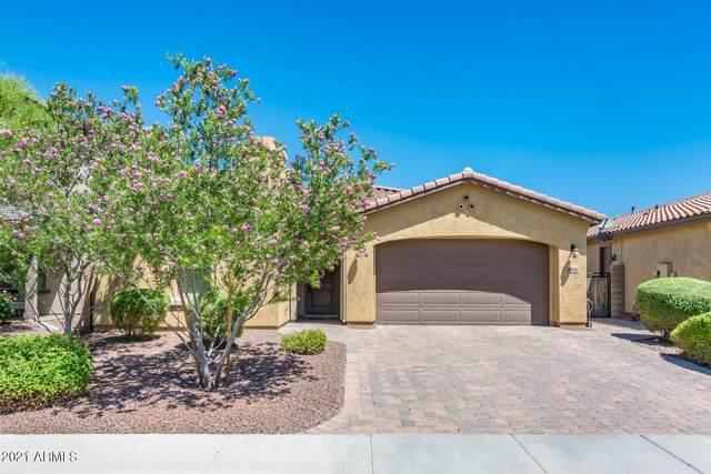 9742 W Los Gatos Drive, Peoria, AZ 85383 (MLS #6243365) :: Maison DeBlanc Real Estate