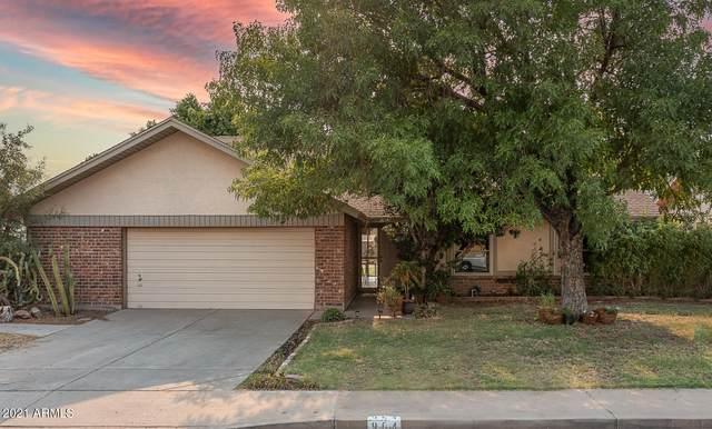 964 N Papillon, Mesa, AZ 85205 (MLS #6243463) :: Yost Realty Group at RE/MAX Casa Grande
