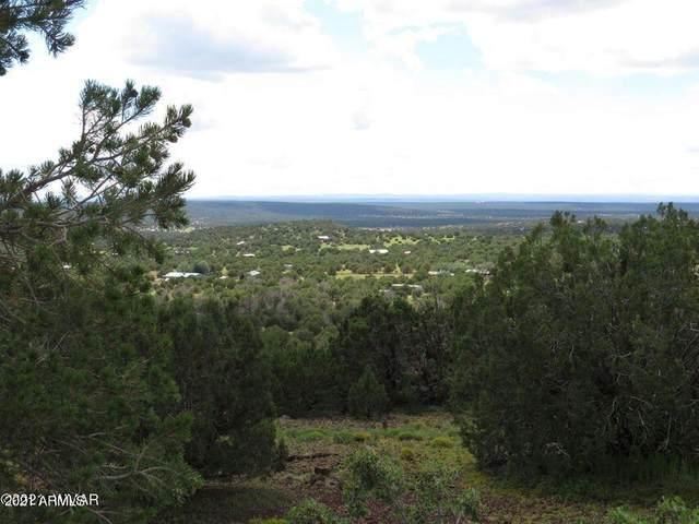 Show Low Pines Unit 10 Lot #382, Concho, AZ 85924 (MLS #6243646) :: Fred Delgado Real Estate Group