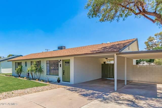 213 E El Camino Drive, Phoenix, AZ 85020 (MLS #6243695) :: Yost Realty Group at RE/MAX Casa Grande
