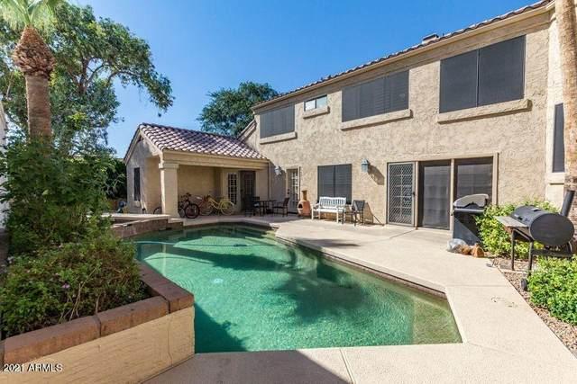 7176 N Via De Amigos N, Scottsdale, AZ 85258 (MLS #6243788) :: Yost Realty Group at RE/MAX Casa Grande
