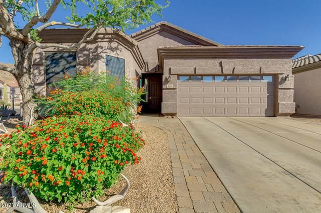 6529 W Andrea Drive, Phoenix, AZ 85083 (MLS #6244280) :: Yost Realty Group at RE/MAX Casa Grande