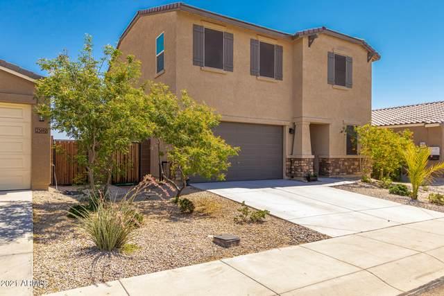 23684 W Watkins Street, Buckeye, AZ 85326 (MLS #6244759) :: Klaus Team Real Estate Solutions