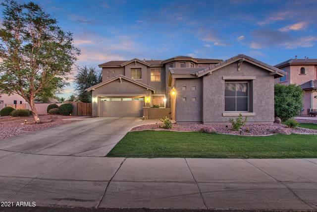 2153 E Zion Way, Chandler, AZ 85249 (MLS #6244779) :: Yost Realty Group at RE/MAX Casa Grande