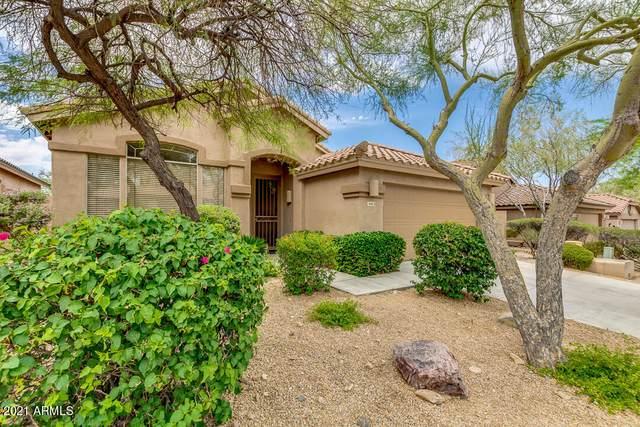 10463 E Salt Bush Drive, Scottsdale, AZ 85255 (MLS #6245272) :: Zolin Group