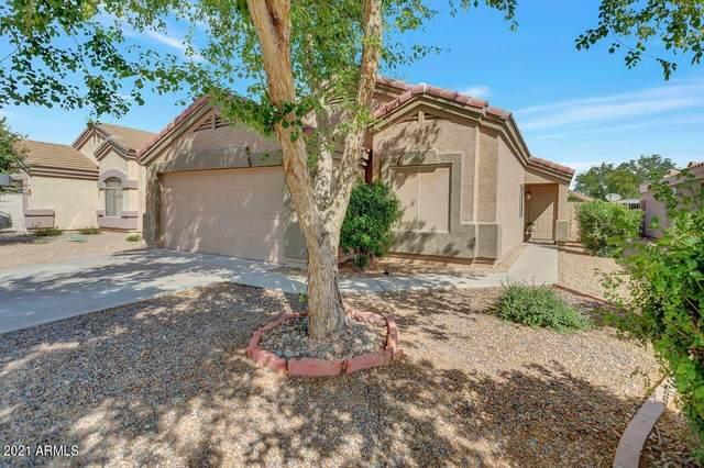 12706 W Santa Fe Lane, El Mirage, AZ 85335 (MLS #6245566) :: Yost Realty Group at RE/MAX Casa Grande