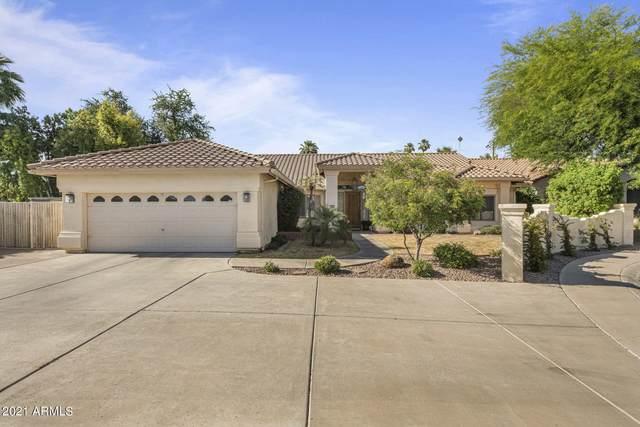 618 E Desert Park Lane, Phoenix, AZ 85020 (MLS #6245670) :: Yost Realty Group at RE/MAX Casa Grande