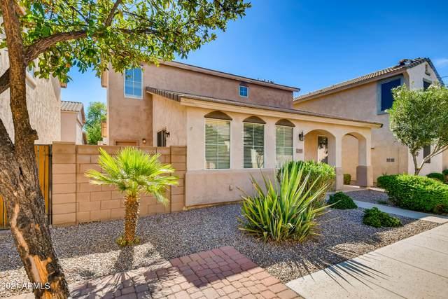 4362 E Carla Vista Drive, Gilbert, AZ 85295 (MLS #6245987) :: Yost Realty Group at RE/MAX Casa Grande