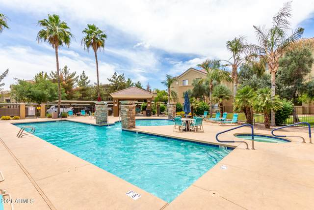 18416 N Cave Creek Road #1042, Phoenix, AZ 85032 (MLS #6246103) :: Yost Realty Group at RE/MAX Casa Grande