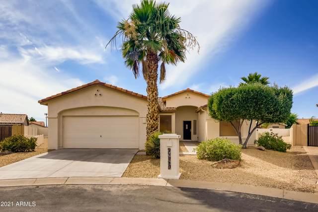 24910 S Mohawk Court, Sun Lakes, AZ 85248 (MLS #6246204) :: Yost Realty Group at RE/MAX Casa Grande