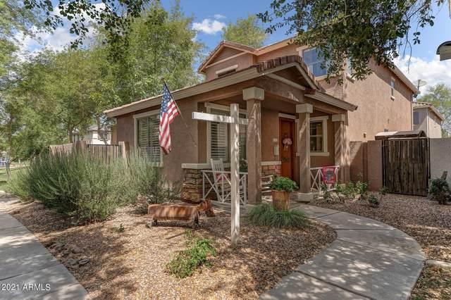 3928 S Rim Road, Gilbert, AZ 85297 (MLS #6246258) :: Yost Realty Group at RE/MAX Casa Grande