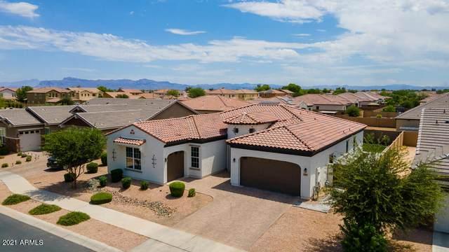 23937 S 223RD Street, Queen Creek, AZ 85142 (MLS #6246432) :: The Helping Hands Team