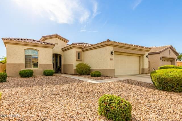5160 S Marigold Way, Gilbert, AZ 85298 (MLS #6247019) :: Conway Real Estate