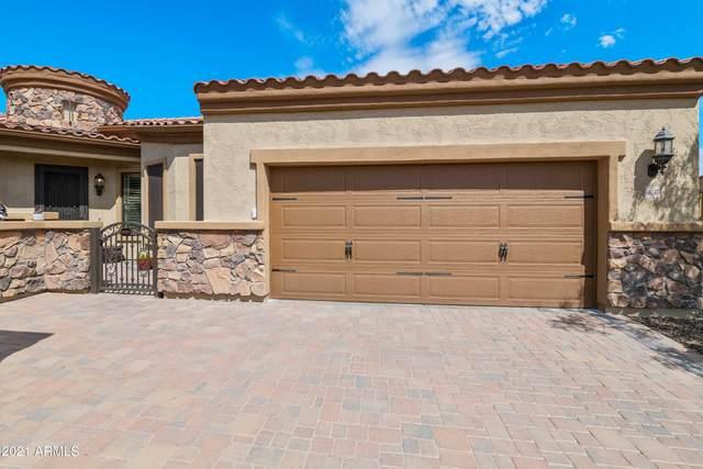 9037 E Ivyglen Circle, Mesa, AZ 85207 (MLS #6247055) :: Walters Realty Group