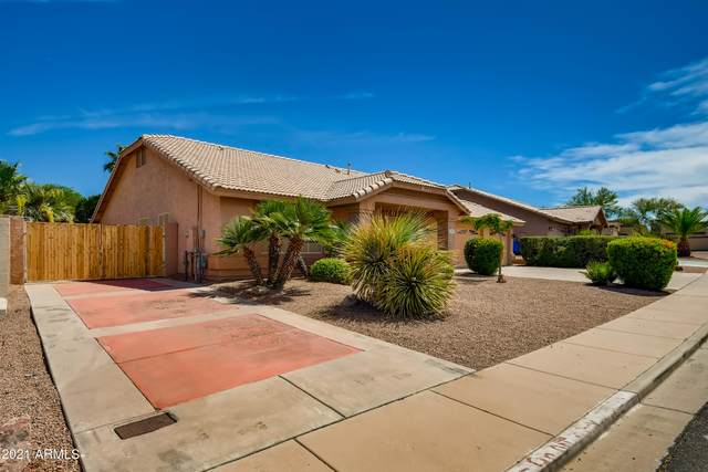 2415 N Saffron, Mesa, AZ 85215 (MLS #6247161) :: Yost Realty Group at RE/MAX Casa Grande