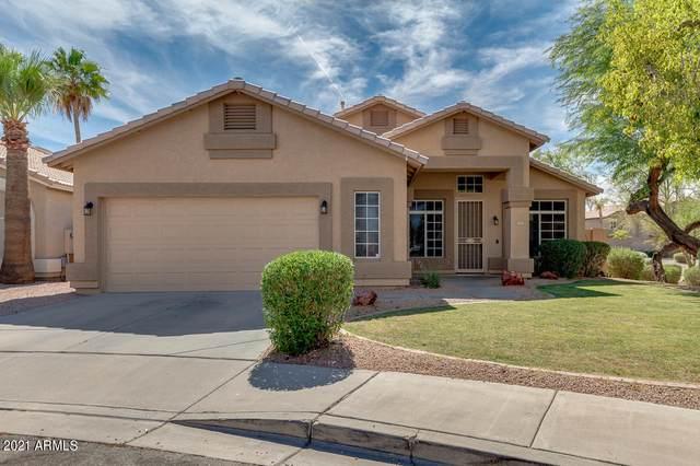 820 N Bradley Drive, Chandler, AZ 85226 (MLS #6247483) :: Yost Realty Group at RE/MAX Casa Grande