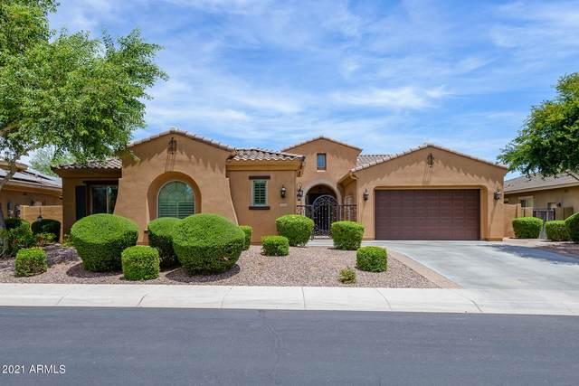 5471 S Big Horn Place, Chandler, AZ 85249 (MLS #6247570) :: Yost Realty Group at RE/MAX Casa Grande