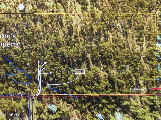 00xx N Vacation Village Road S, Show Low, AZ 85901 (MLS #6247613) :: Klaus Team Real Estate Solutions