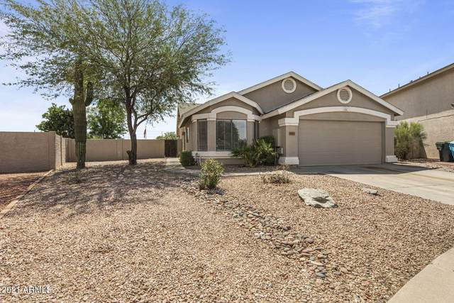 18801 N 8TH Place, Phoenix, AZ 85024 (MLS #6247745) :: Power Realty Group Model Home Center