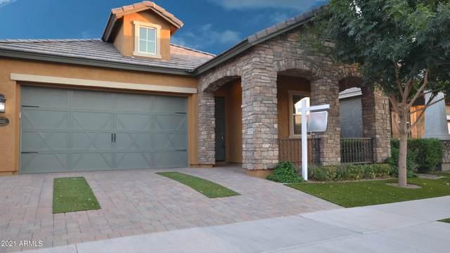 10533 E Naranja Avenue, Mesa, AZ 85209 (MLS #6247785) :: Yost Realty Group at RE/MAX Casa Grande
