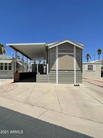 2363 S Pomo Avenue, Apache Junction, AZ 85119 (MLS #6248795) :: Hurtado Homes Group
