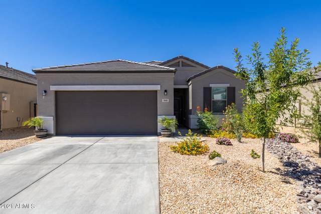 11441 E Wallflower Lane, Florence, AZ 85132 (MLS #6249062) :: Klaus Team Real Estate Solutions