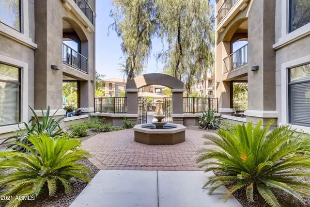 11640 N Tatum Boulevard #1010, Phoenix, AZ 85028 (MLS #6249266) :: The Carin Nguyen Team