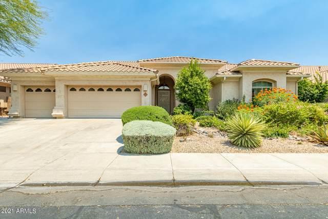 5436 E Sheena Drive, Scottsdale, AZ 85254 (MLS #6249332) :: Yost Realty Group at RE/MAX Casa Grande