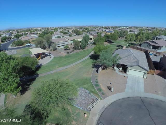 19137 N Arbor Drive, Maricopa, AZ 85138 (MLS #6249590) :: Power Realty Group Model Home Center