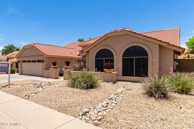 13346 N 101ST Street, Scottsdale, AZ 85260 (MLS #6249611) :: The Luna Team