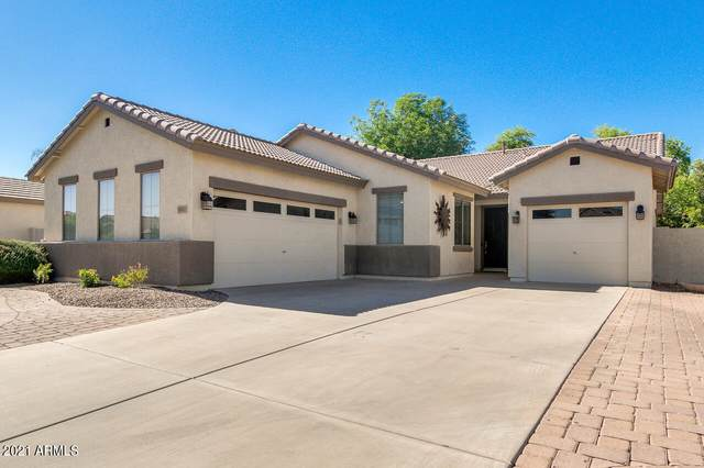 3852 E Packard Drive, Gilbert, AZ 85298 (MLS #6249647) :: Lucido Agency