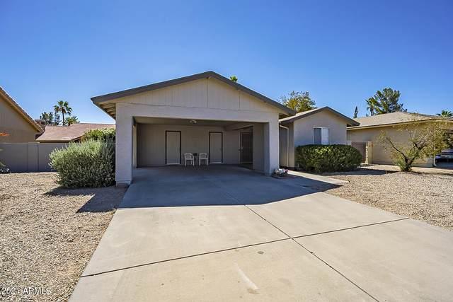 26442 S Saddletree Drive, Sun Lakes, AZ 85248 (MLS #6249678) :: Midland Real Estate Alliance