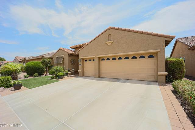 3899 N 162ND Lane, Goodyear, AZ 85395 (MLS #6250505) :: West USA Realty