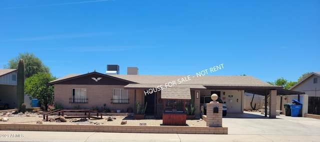 3627 W Rue De Lamour Avenue, Phoenix, AZ 85029 (MLS #6251046) :: Yost Realty Group at RE/MAX Casa Grande