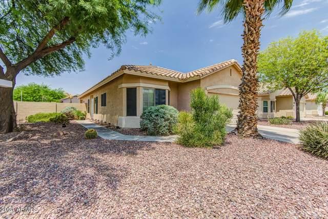 4052 W Hackamore Drive, Phoenix, AZ 85083 (MLS #6251220) :: Yost Realty Group at RE/MAX Casa Grande