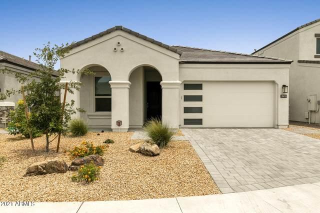 24115 N 21ST Street, Phoenix, AZ 85024 (MLS #6251519) :: Yost Realty Group at RE/MAX Casa Grande
