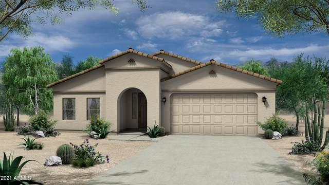 1361 E Avenida Isabela, Casa Grande, AZ 85122 (MLS #6251600) :: Yost Realty Group at RE/MAX Casa Grande